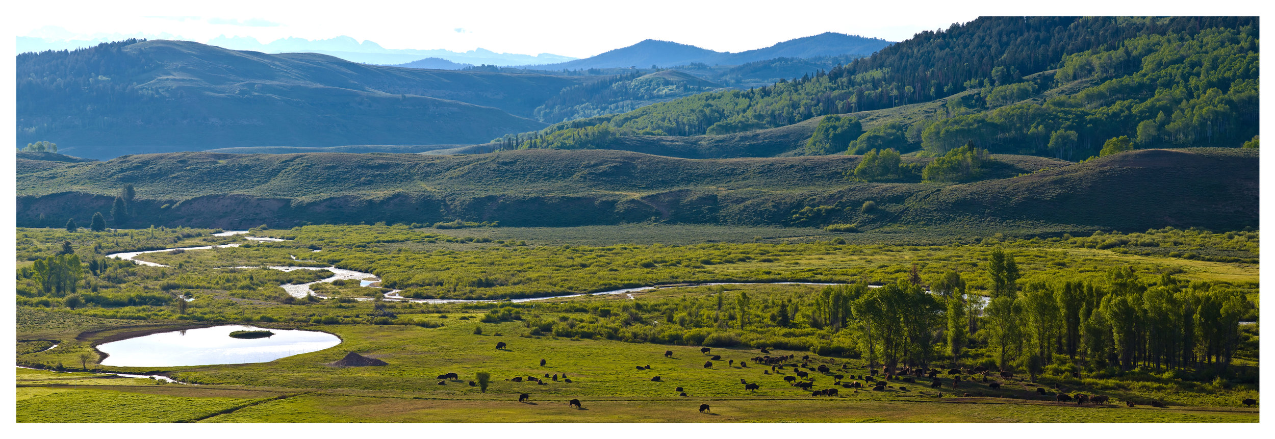Jackson Fork Ranch 1103_FRAME.jpg