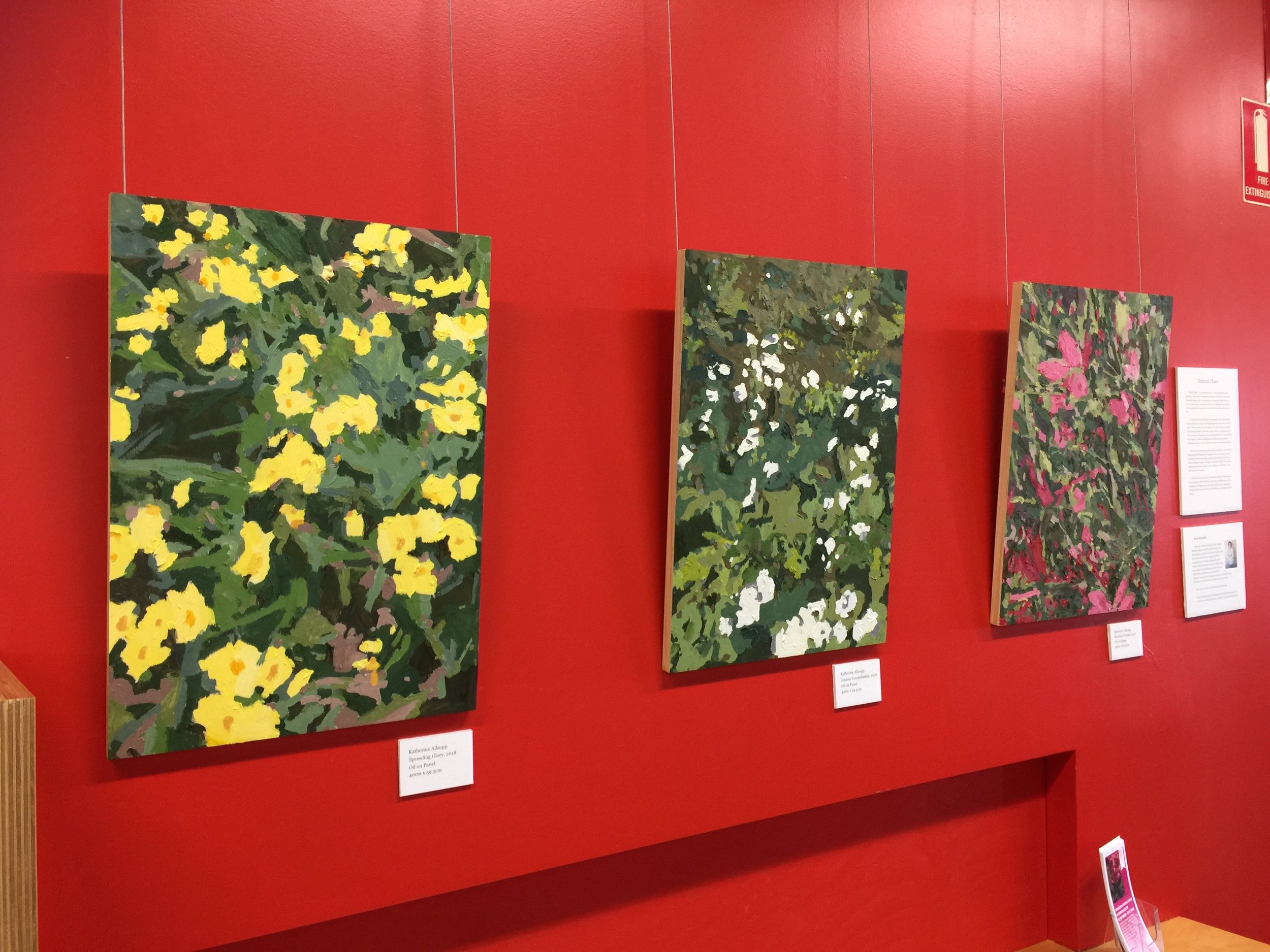 A selection of work looking striking on the red gallery wall