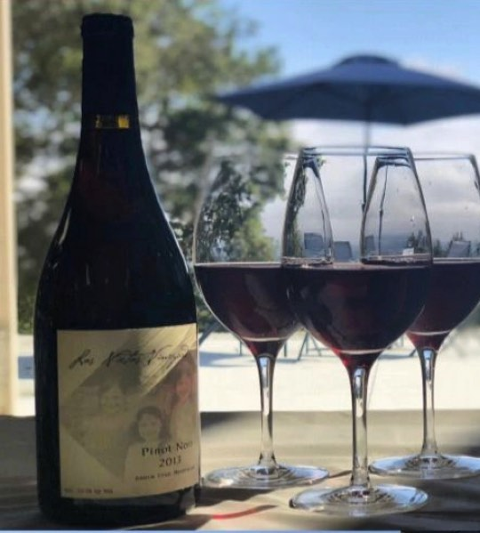 For those of you who missed our tasting, check out link in bio to purchase online! Through the site, you can also join our list to find out about upcoming events! #pinotnoir #santacruz #winetasting