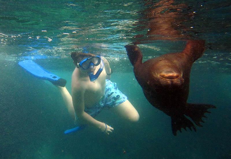 Galapagos Snorkeling1.jpg