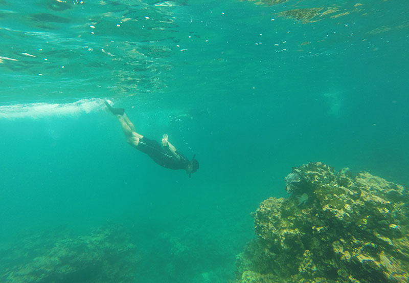 The activities to do in Galapagos -