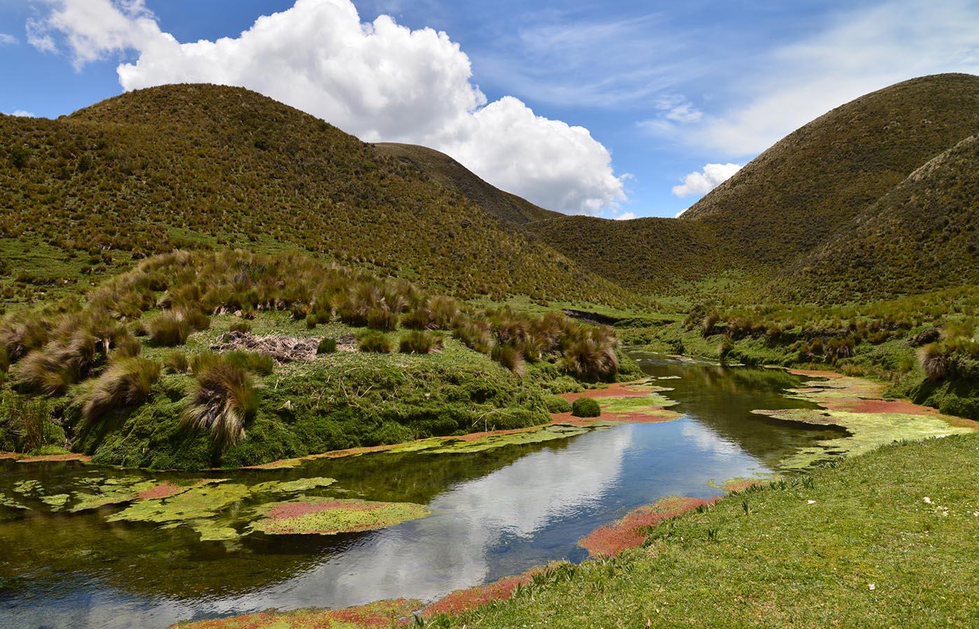 National Parks -