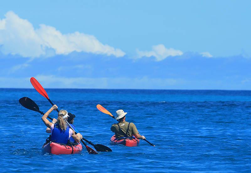 Sea Kayaking Galapagos.jpg