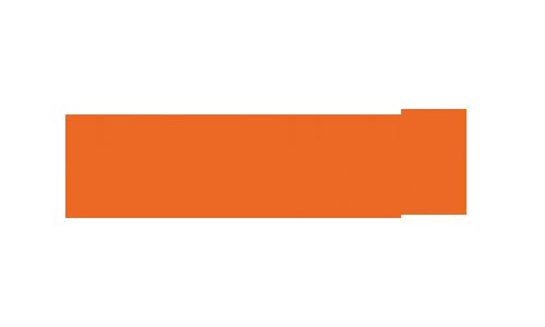 BLUM_RGB_300DPI_PNG_(orange_no_background) copy.png