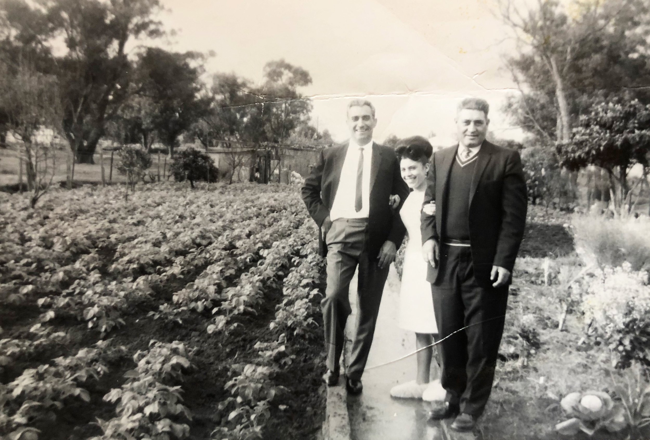 Nonno Giuseppe settled in Australia with his veggie patch