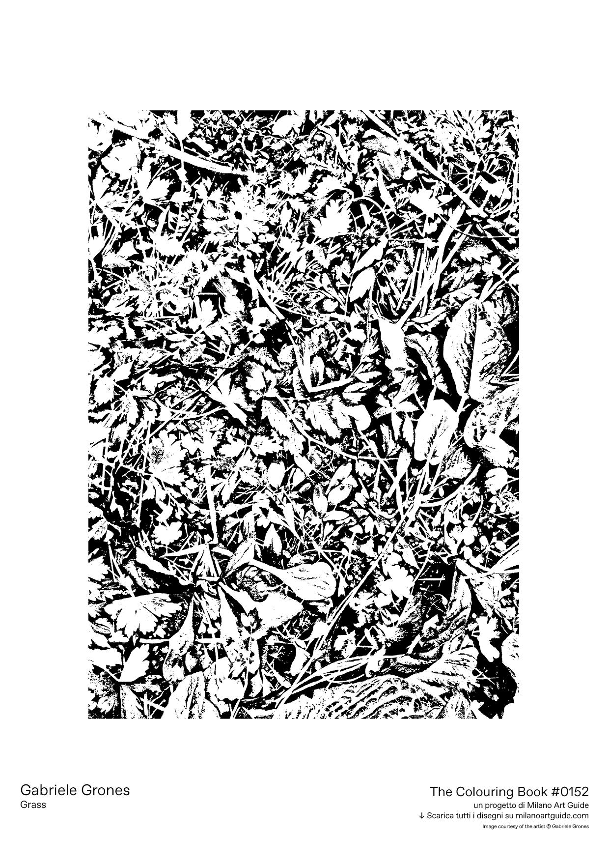 0152_GabrieleGrones_Grass_THECOLOURINGBOOK_MILANOARTGUIDE.jpg