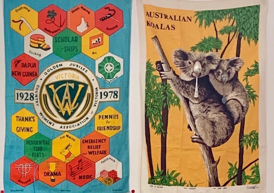 CWA & Play Koalas