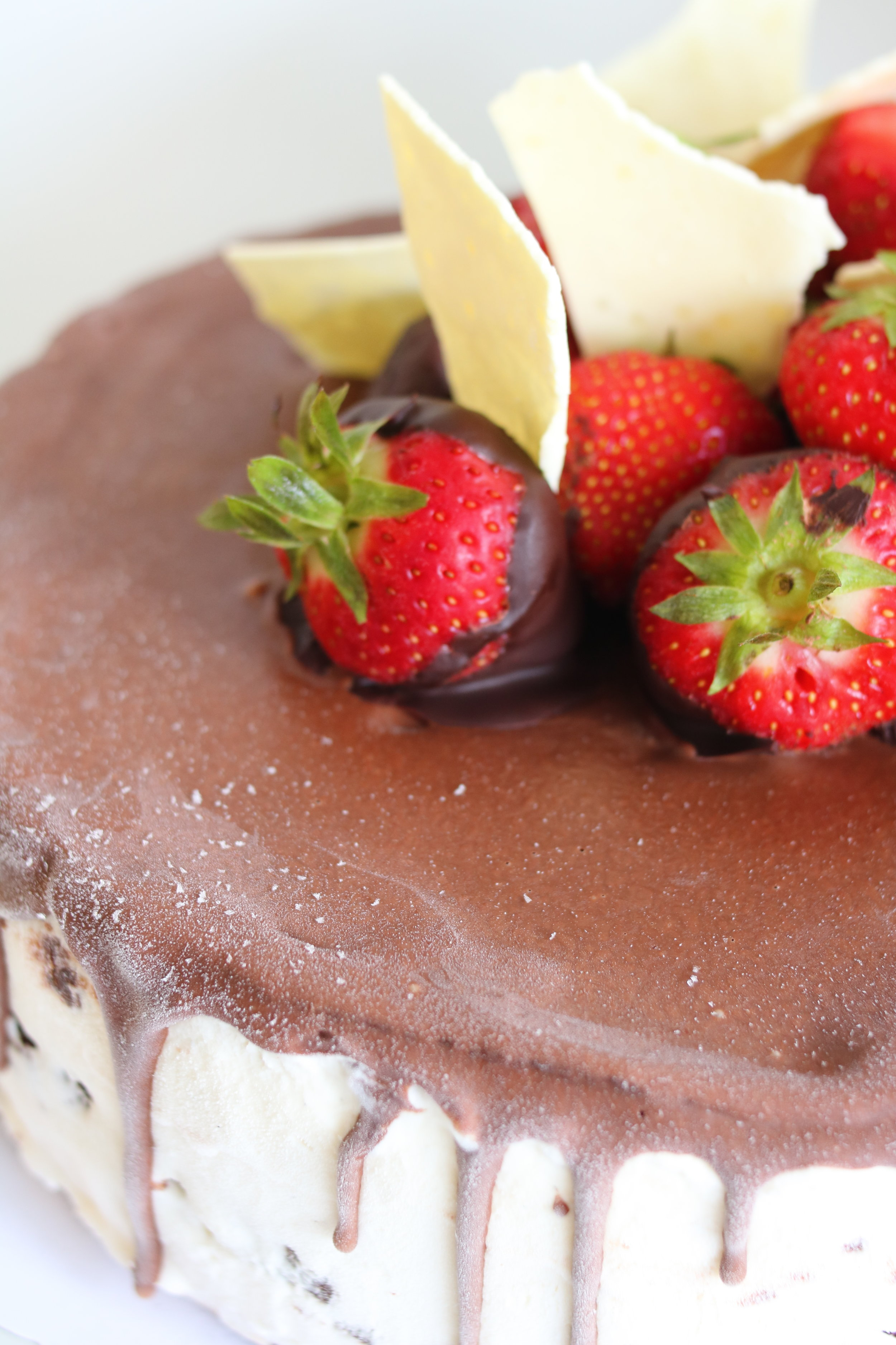 Chocolate Brownie Ice Cream Cake (GF)