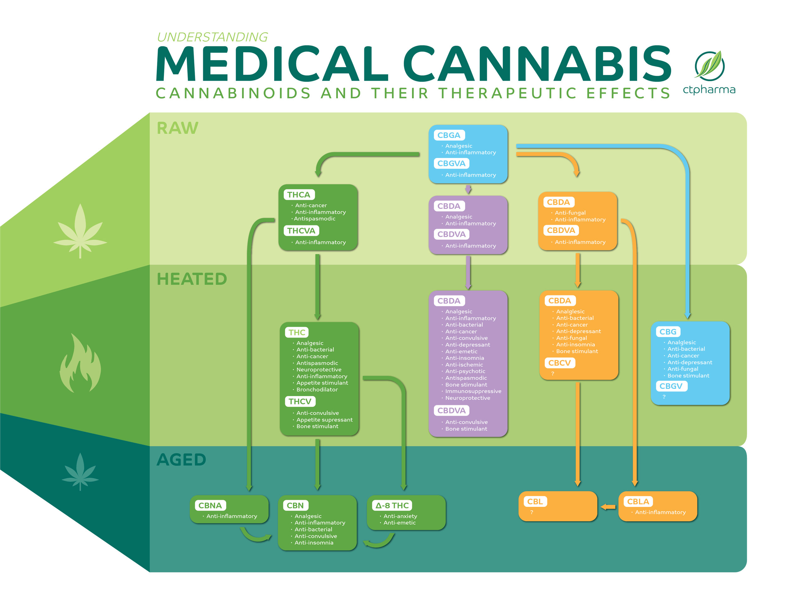 Understanding_Medical_Cannabis-01.jpg
