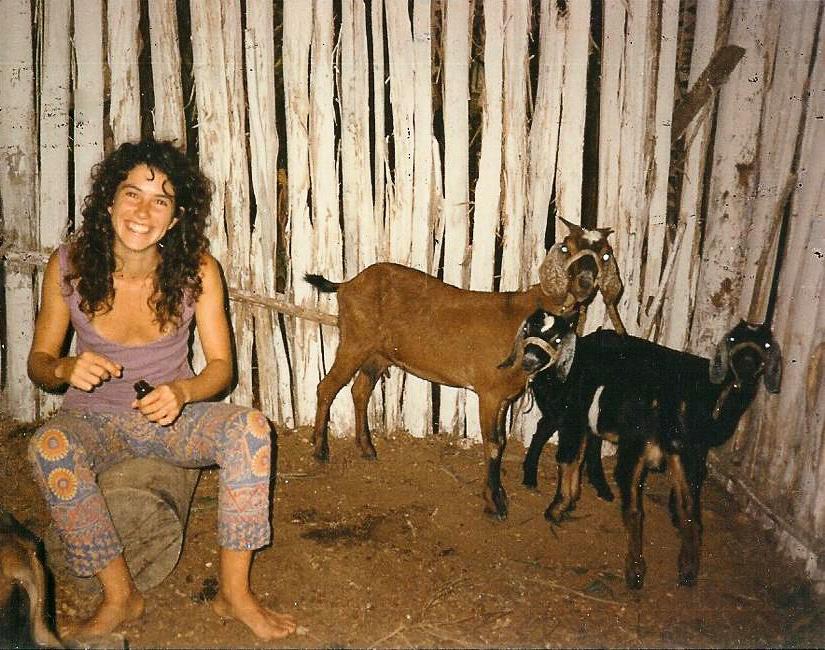 permaculture goat sustainable eco community eco village