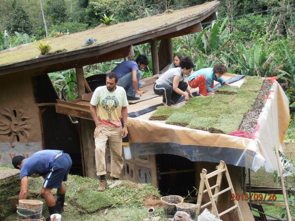 green roof bio construction sustainable tiny house