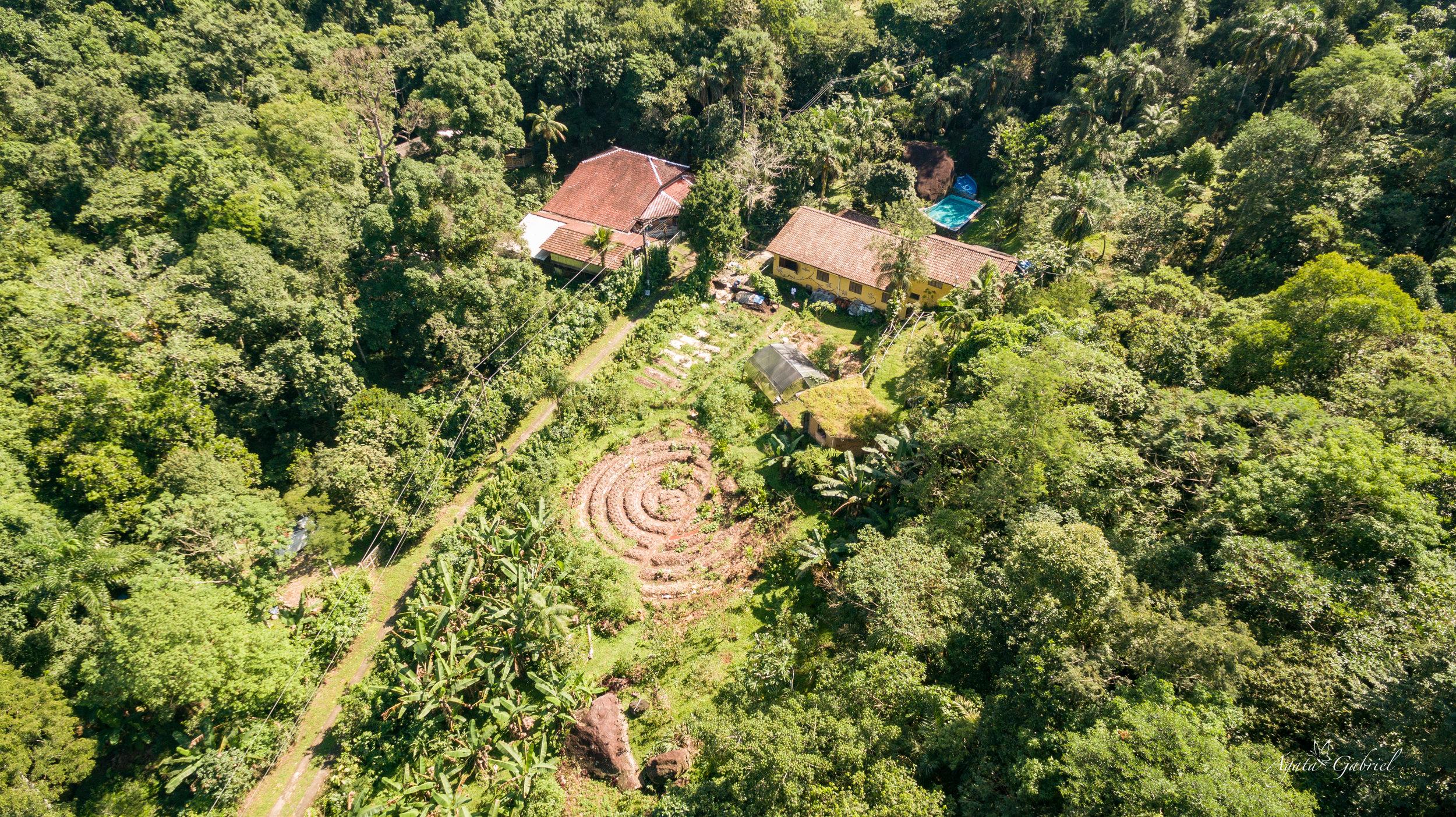 Imagine viver e cultivar sua própria comida nesta Eco Village, no meio da Mata Atlântica do Brasil