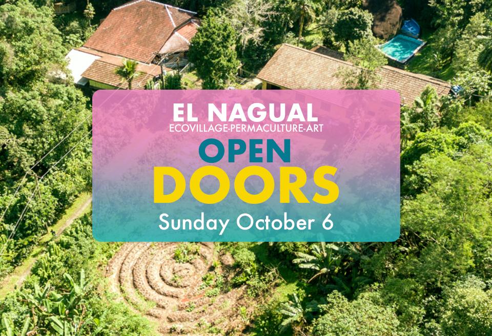 Open Doors banner.jpg