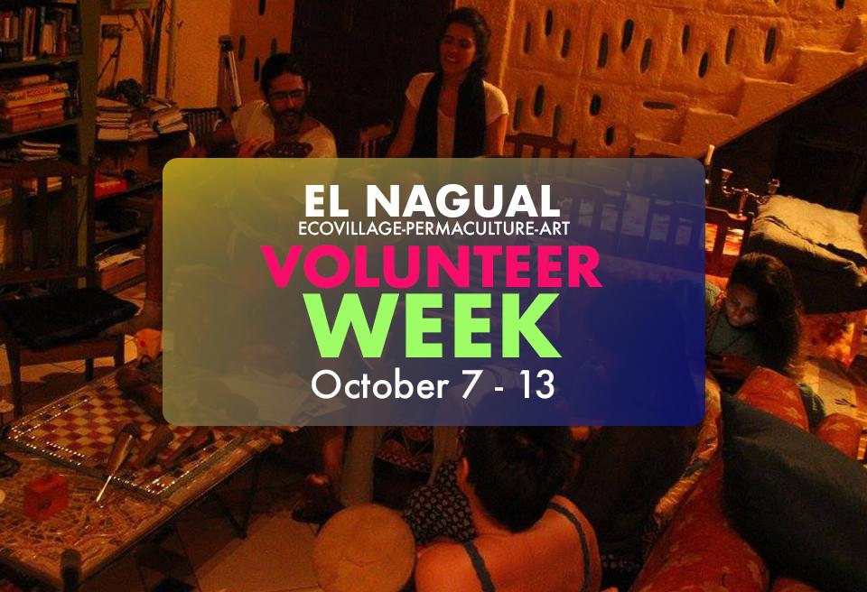 Volunteer Week banner.jpg