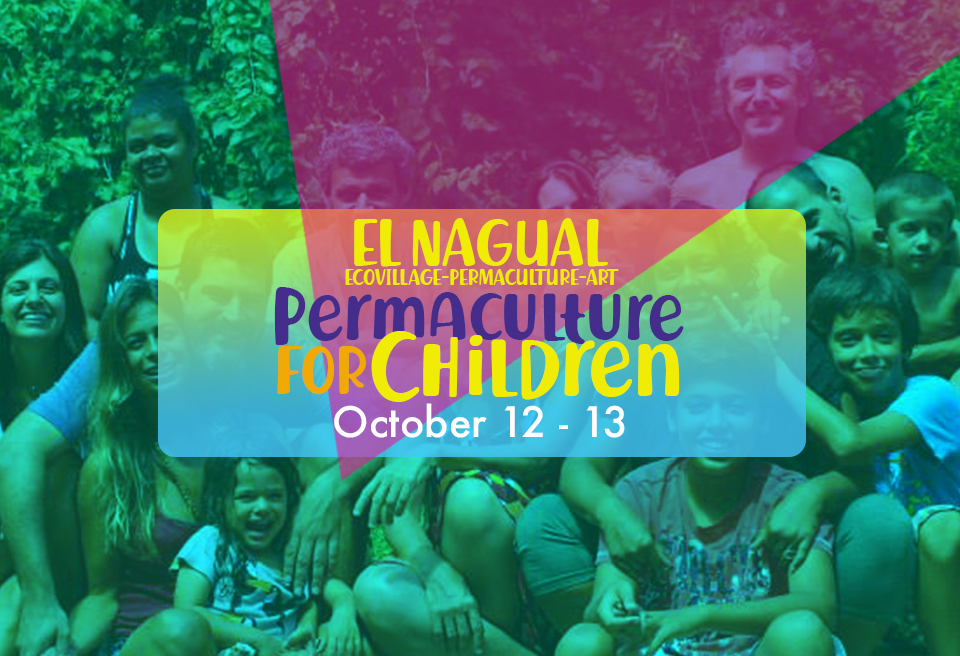 permaculture for children banner.jpg
