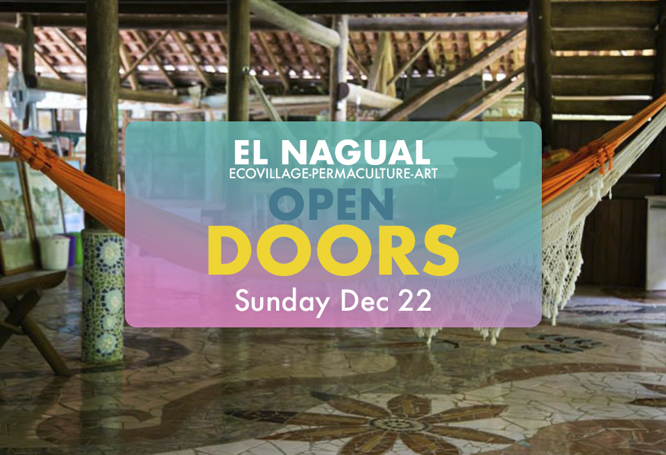 open doors banner nov.jpg