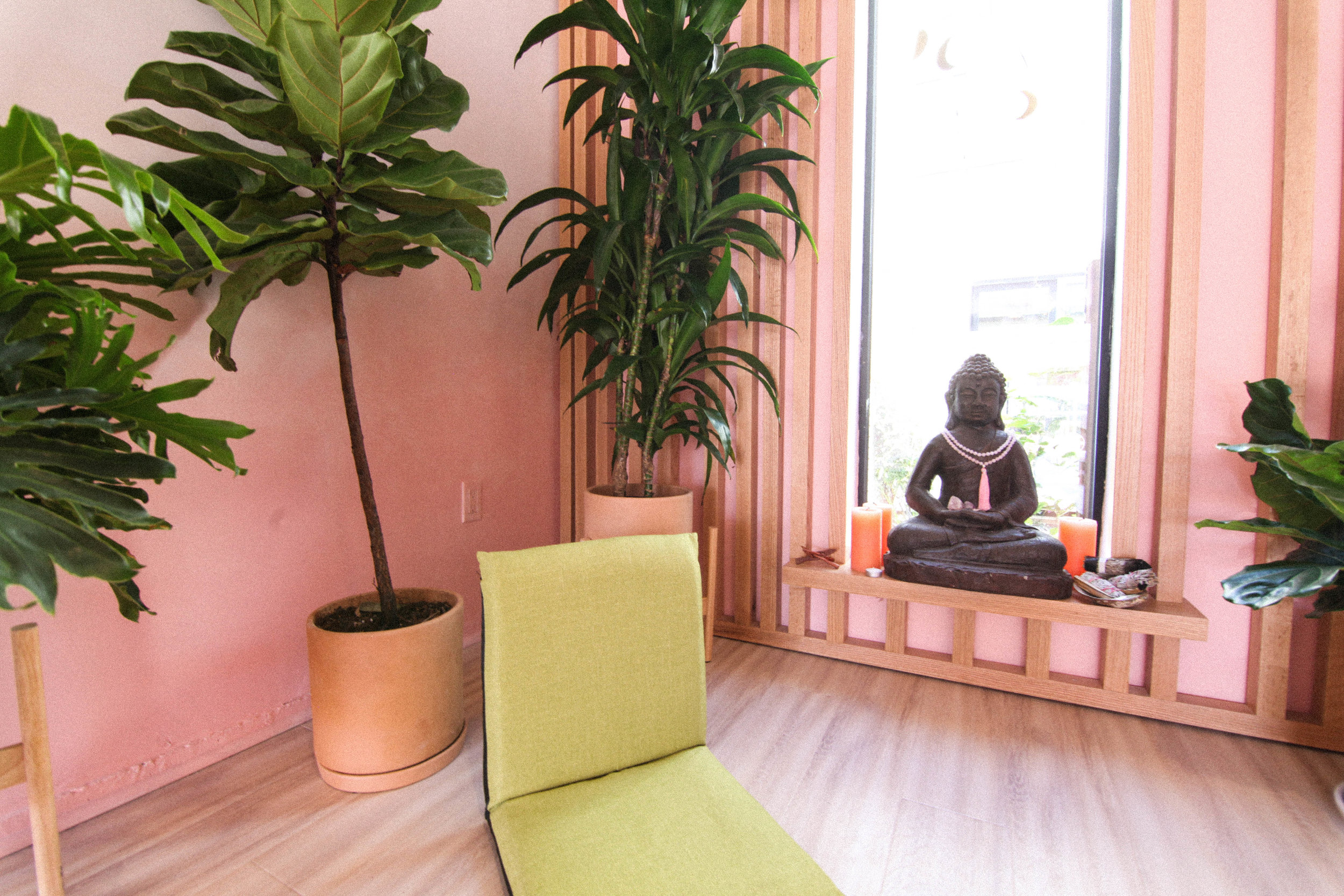 WELLNESS COLIVING -