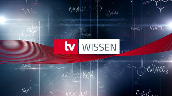 TV-WISSEN
