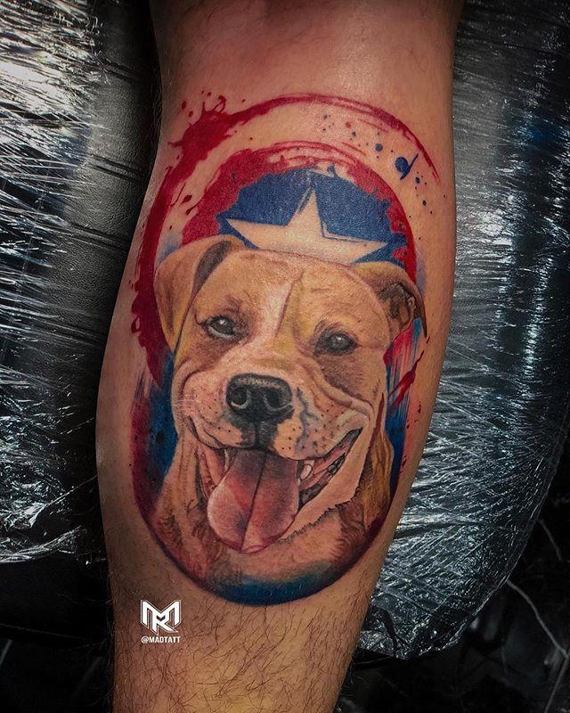 Everyone has their own superhero🐶🦹🏻♂️ Tattoo Artist: @madtatt 💉 Comment below who your superhero is👇🏻 #BambooTattoo • • • #torontotattooshop #torontotattoostudio #torontotattoos #torontotattoo #torontotattooartist #torontotattooartists #tattootoronto #colourtattoo #colourtattoos #tattoocolour #tattoocolours #colourtattooing #dogtattoo #dogtattoos #tattoodog #tattoodogs #captianamerica #captainamericatattoo #americatattoo #tattooamerica