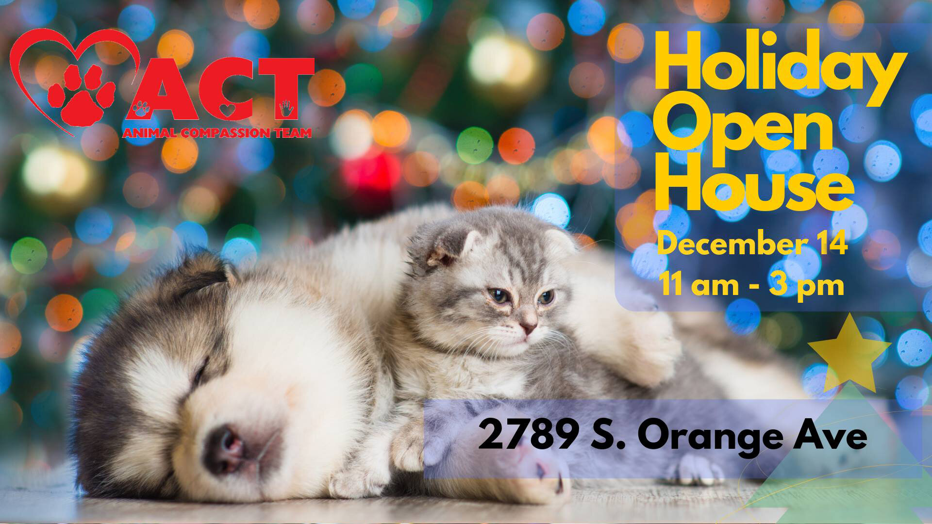 act holiday open house 2019.jpg