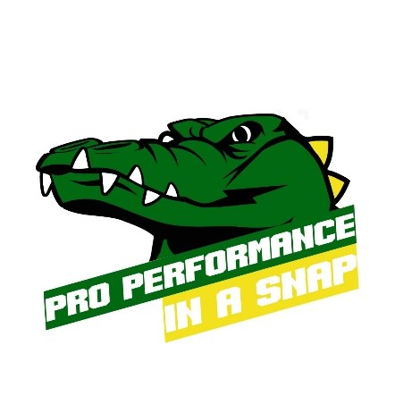Pro Performance In A Snap.jpg
