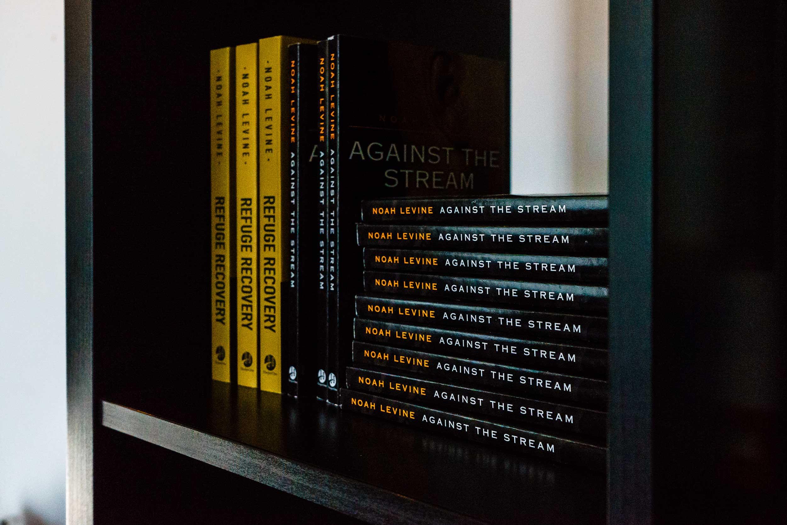Against_The_Stream_Book_Noah_Levine.jpg