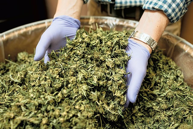 Rules Would Put a Premium on Hemp Products Made in Vermont - The skunky aroma of cannabis greeted a visitor at the door of Kria Botanicals' small South Burlington lab last week.Keep Reading →