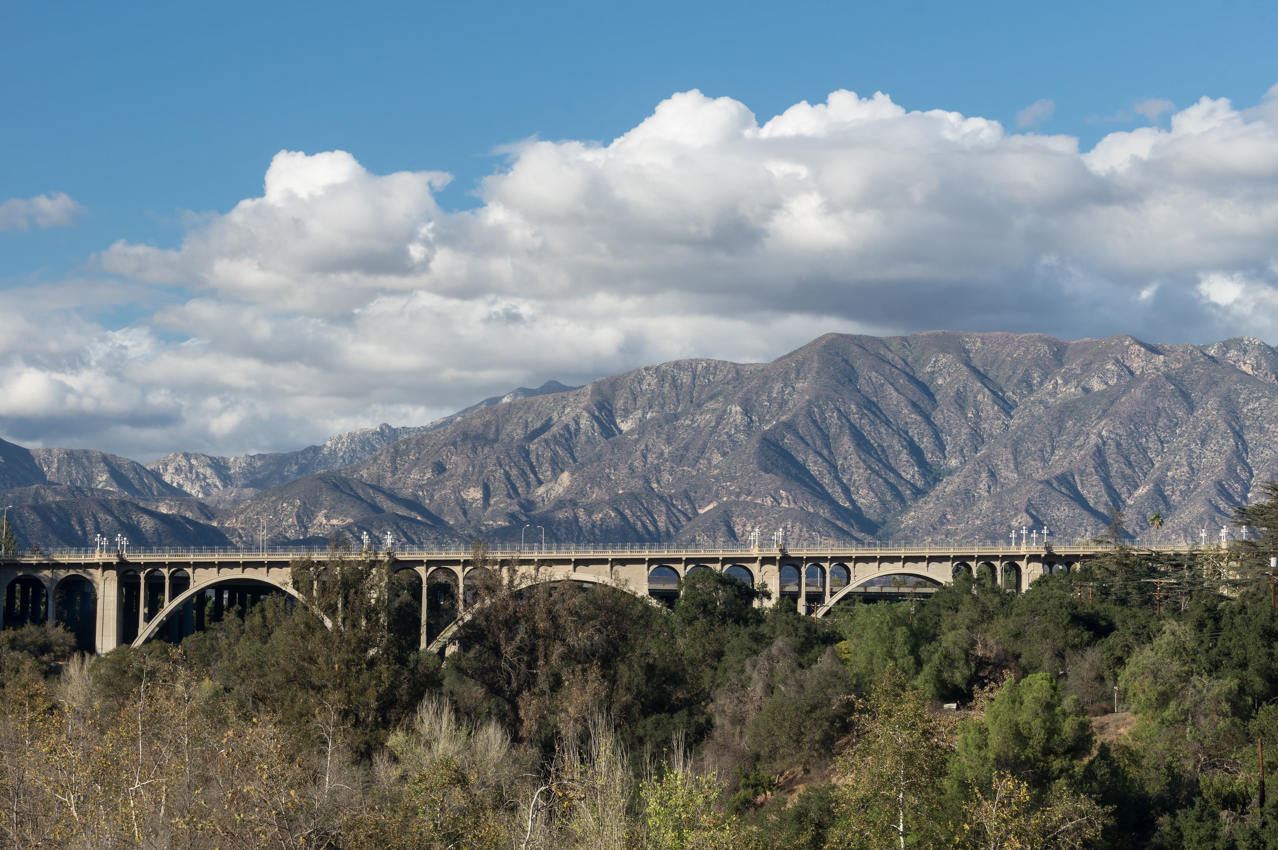 Pasadena-Banner.jpeg