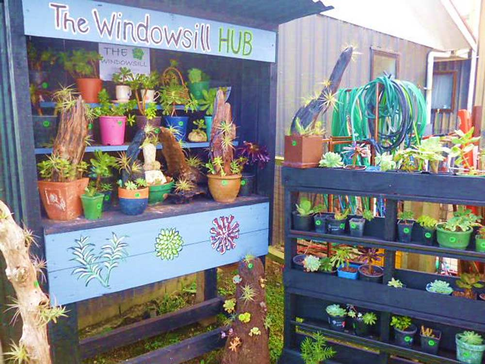 The Window Sill Micro Business by Bevan