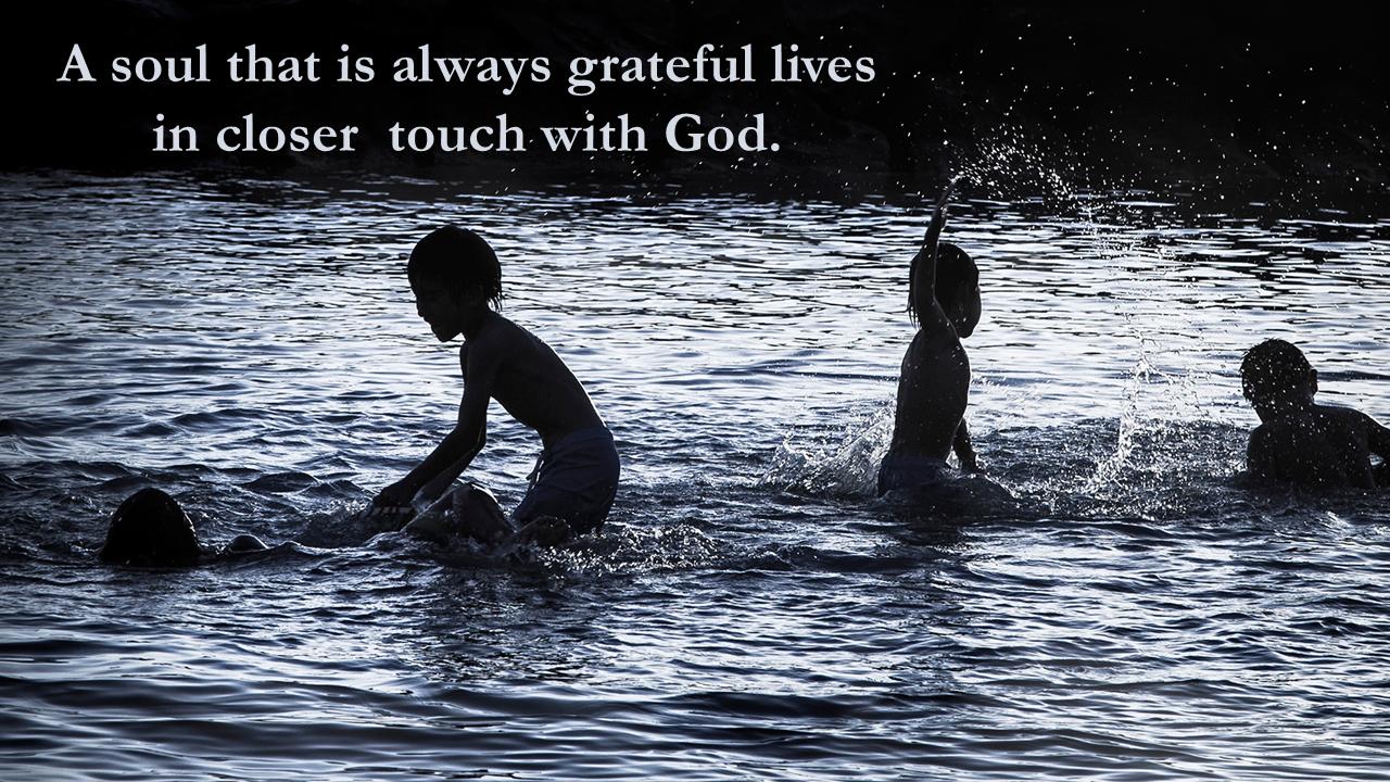 Gratitude - January