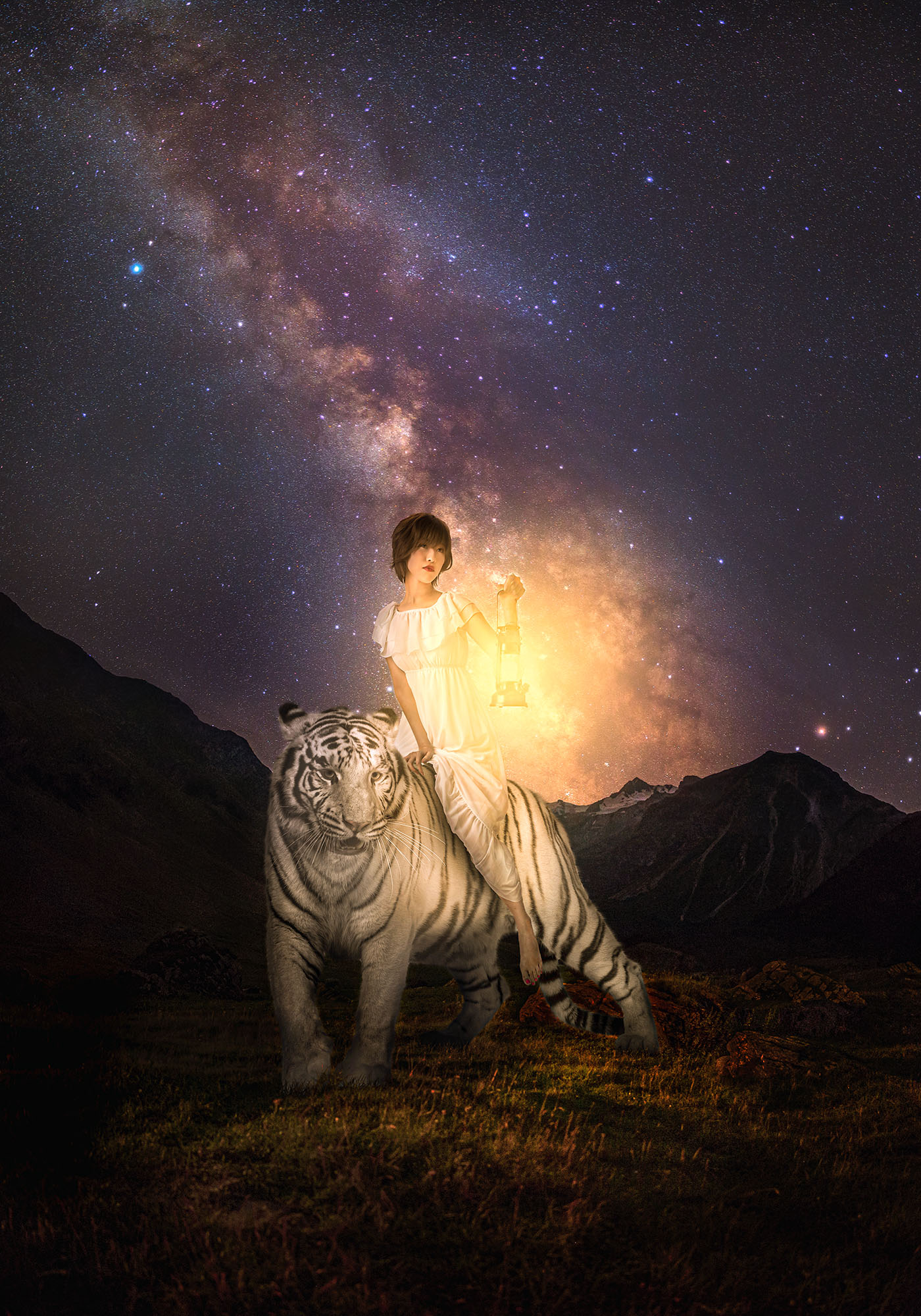 unreal, photo, photography, woman, manipulation, ポートレート、写真、女性、合成写真、天の川、トラ, milkyway, tiger