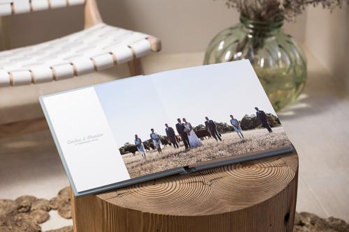 Photo Album by Cream Coloured Ponies-2.jpg
