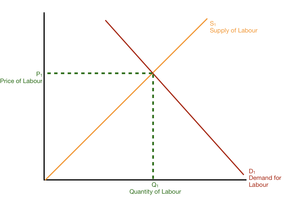 We begin at equilibrium; the number of workers (Q1) and price of labour = wages (P1) are set. Supply (S1) and Demand (D2) are stable.