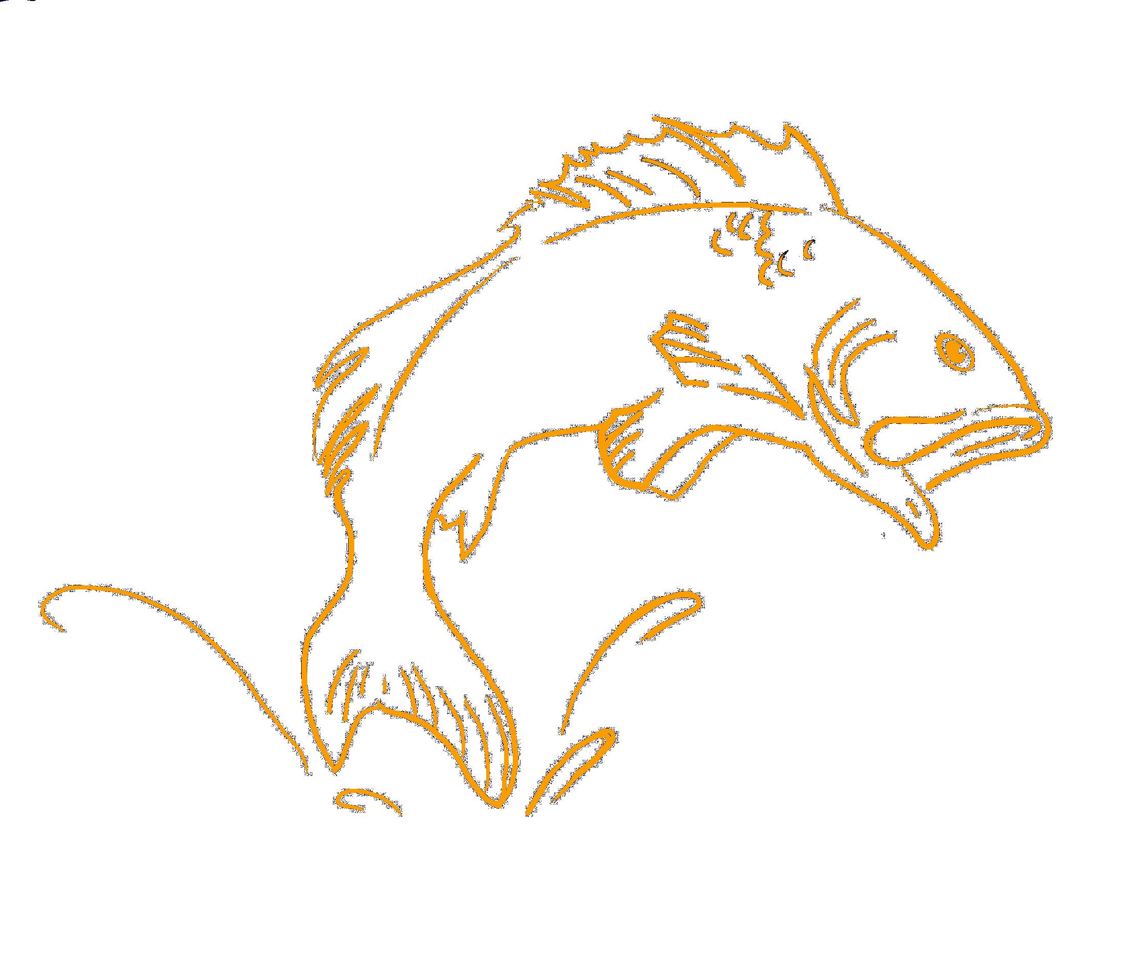 ChackoMD.Fish.png