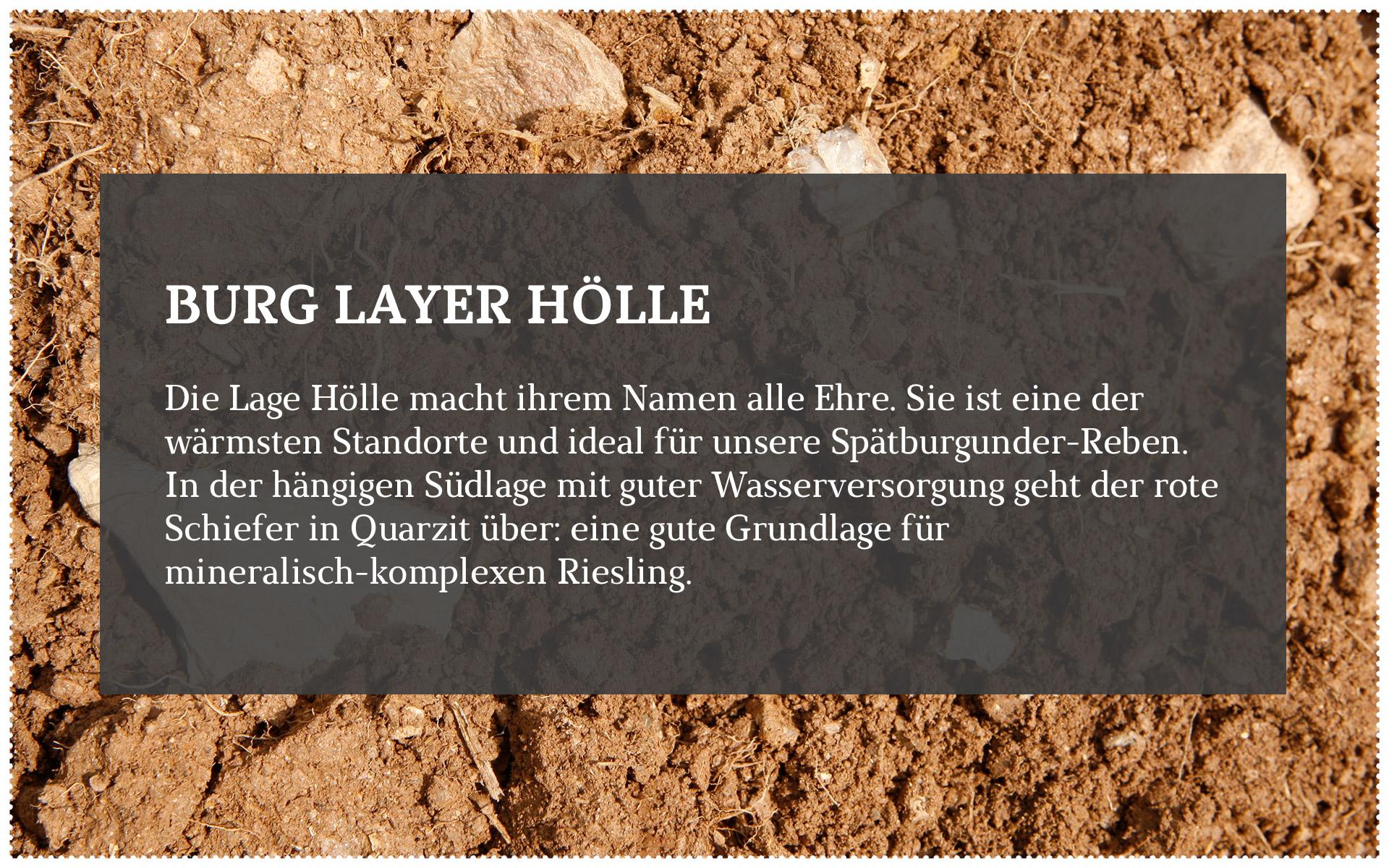 Forster_Lagen_2-3.jpg