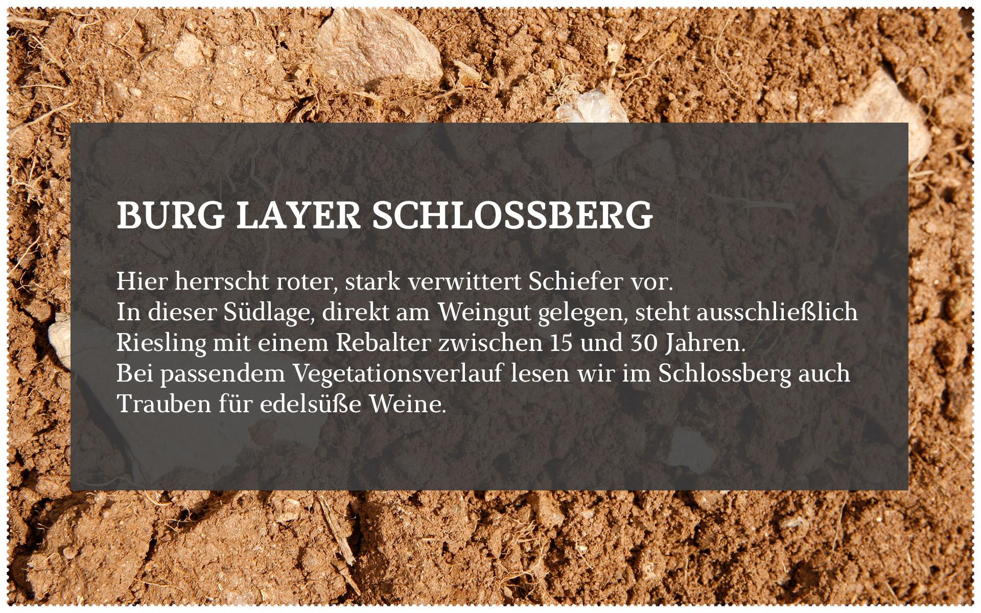 Forster_Lagen_3-3.jpg