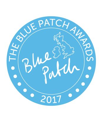 http___community.bluepatch.org_wp-content_uploads_2017_08_Blue_patch_awards_2017.jpg