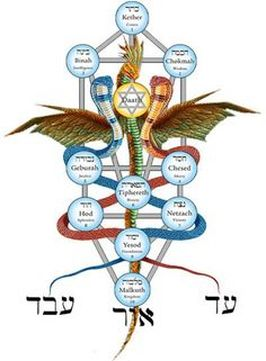 Tree Of Life Kabbalah Elements / Kabbalah is the basis of all religions, sciences, philosophies, and arts.