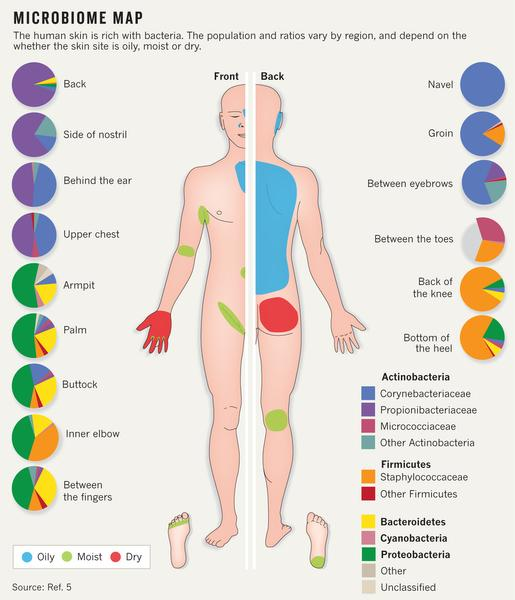 Source: Human Microbiome Map