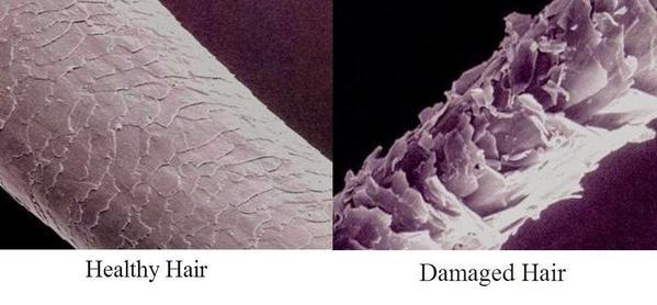 Healthy_hair_vs_damaged_hair_grande.jpg