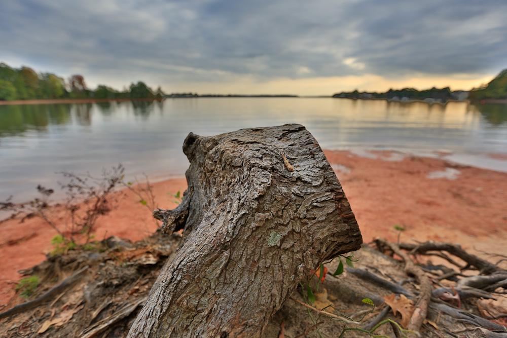 Jetton-Park-Lake-Norman-006.jpg
