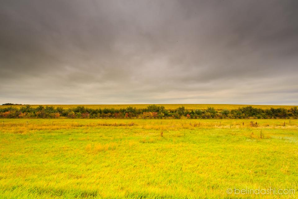 Day 51 - Fort Pierre National Grassland-002