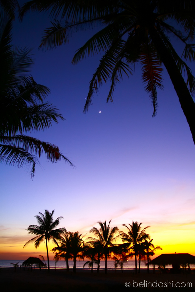 Palm trees in sunset at secluded Ngwe Saung beach