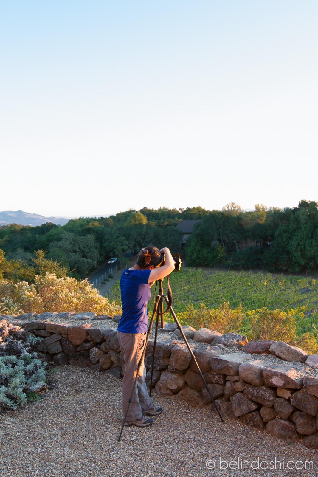 Belinda at Paradise Ridge Winery