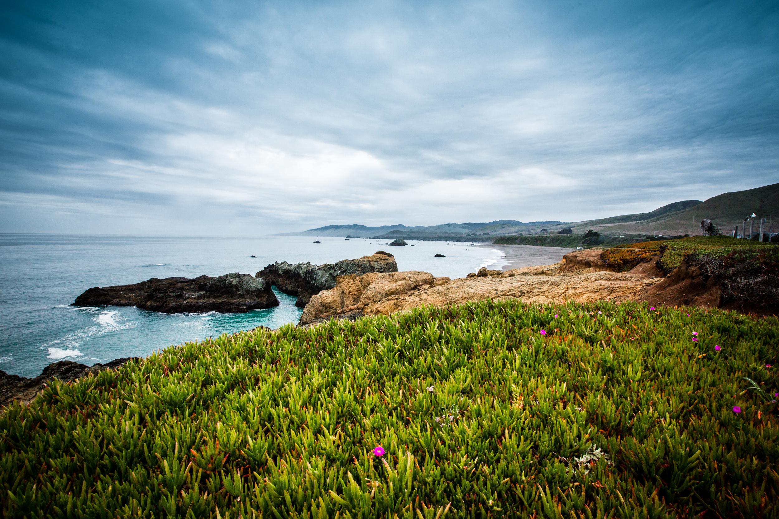 Tomales Bay-4.jpg