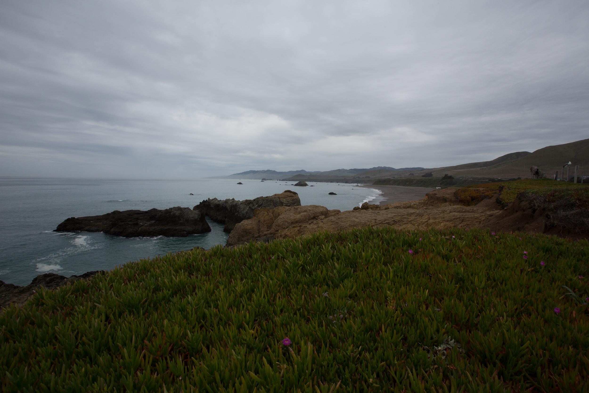 Tomales Bay-7.jpg