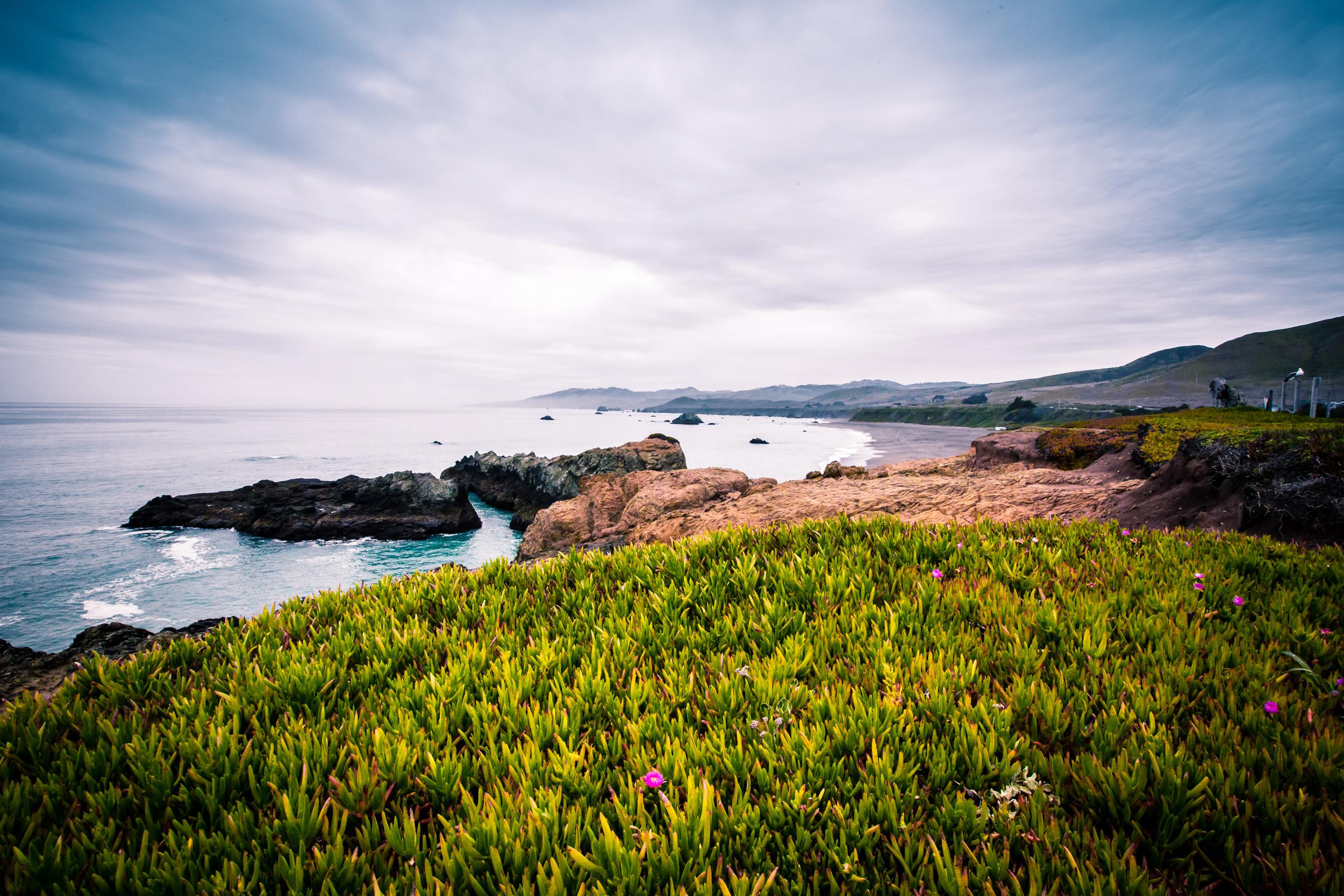 Tomales Bay-8.jpg