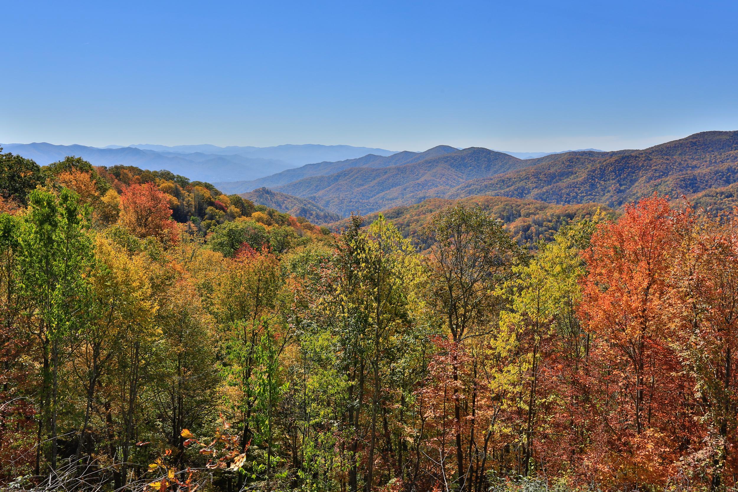 Great Smoky Mountain-017.jpg
