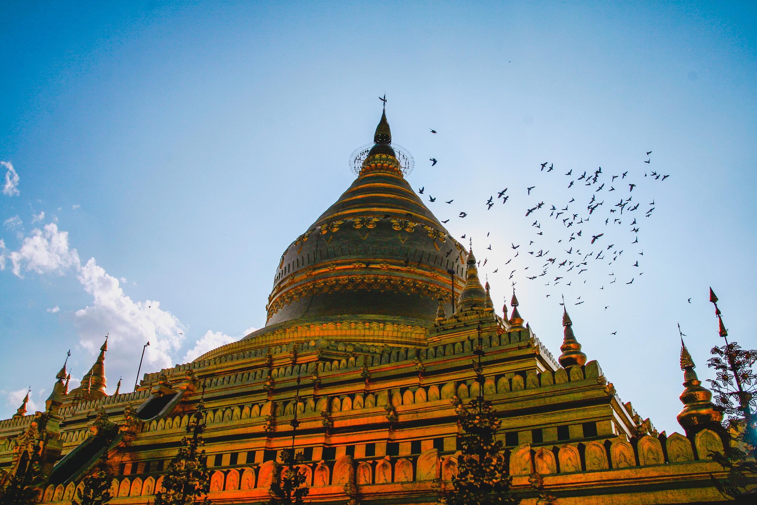 Golden Shwezigon Paya Bagan.jpg