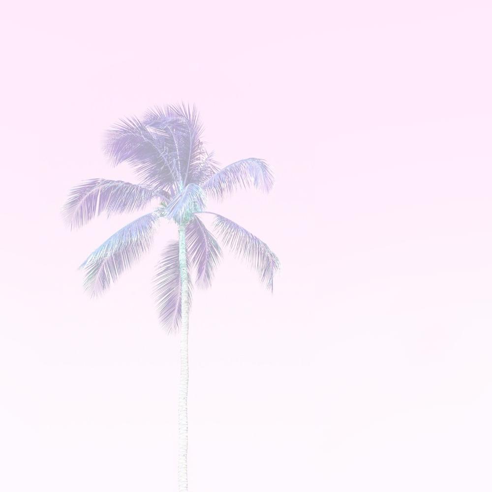 Beach Toss -
